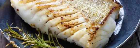 Fumet poisson et fumet crustacé, bases culinaires pour restaurateurs
