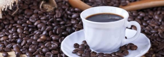 Gamme café OCE en grain biologique et équitable Arabica et Robusta
